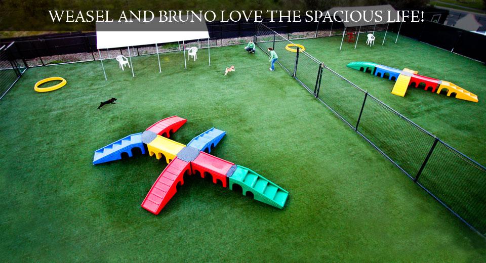 HP5-Playground