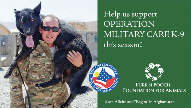 Support U.S. Military Working Dog Teams this Season of Giving