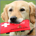 PNP-CC-April-Inset-First-Aid