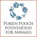 pnp-cc-november-pnpfa-logo