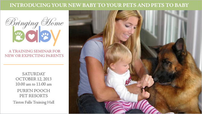 Introducing Your New Baby To Your Pets and Pets to Baby