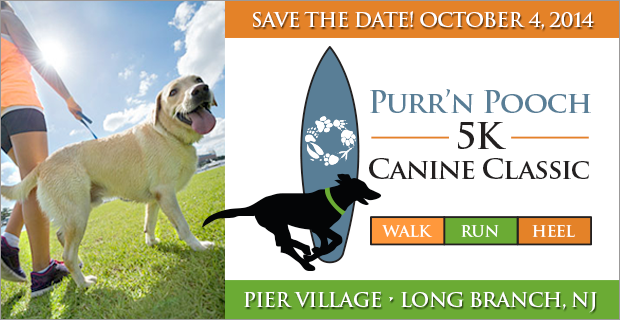 People and Dogs Run/Walk for Animal Charity at 5K Canine Classic