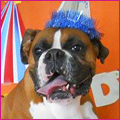 PNP-CC-August-Birthdays