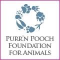 PNP-CC-August-Foundation