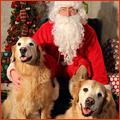 PNP-CC-November-Santa-Photos